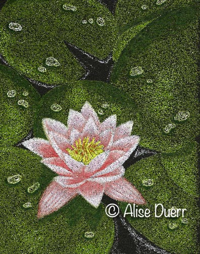 Lily Pads Colored Pencil PDF DOWNLOAD
