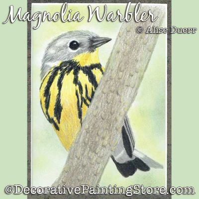 Magnolia Warbler Colored Pencil - Alise Duerr - PDF DOWNLOAD