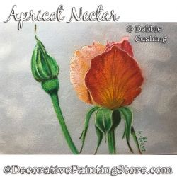 Apricot Nectar (Colored Pencil) Download - Debbie Cushing