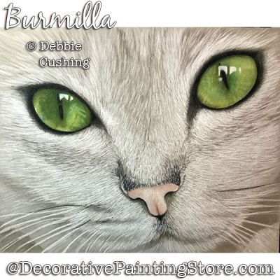 Burmilla (White Cat) Colored Pencil Download - Debbie Cushing