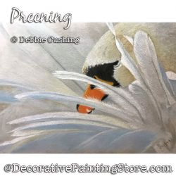 Preening (Swan) Colored Pencil Painting Pattern Download - Debbie Cushing