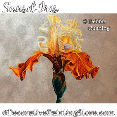 Sunset Iris Colored Pencil Painting Pattern Download - Debbie Cushing