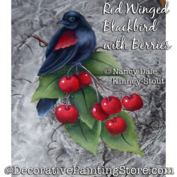 Red Winged Blackbird with Berries Painting Pattern PDF DOWNLOAD - Nancy Dale