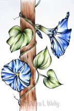 Morning Glory in Pen & Ink and Oils e-Pattern DOWNLOAD