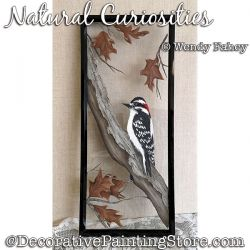 Natural Curiosities (Woodpecker) DOWNLOAD - Wendy Fahey