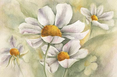 Daisy... Daisy Watercolor - Gayle Laible - PDF DOWNLOAD