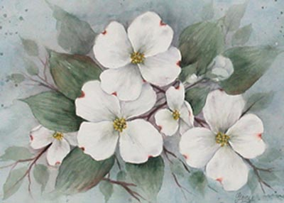 Dogwood Watercolor - Gayle Laible - PDF DOWNLOAD