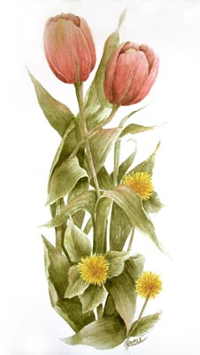 Peach Tulips & DandelionWatercolor - Gayle Laible - PDF DOWNLOAD