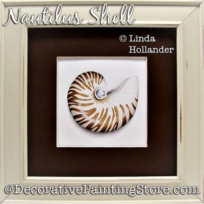 Nautilus Shell Download Painting Pattern - Linda Hollander