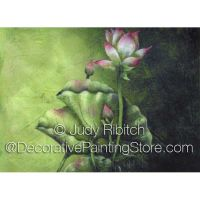 Water Lily ePattern - Judy Ribitch - PDF DOWNLOAD
