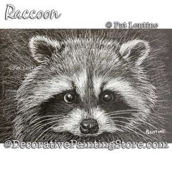 Raccoon (Colored Pencil) Painting Pattern PDF DOWNLOAD Painting Pattern - Pat Lentine