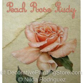 Peach Rose Study Colored Pencil ePattern - Nilda Rodriguez - PDF Download