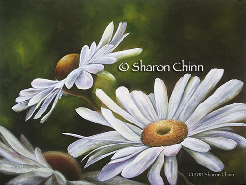 Oops-a-Daisy! PDF DOWNLOAD - Sharon Chinn